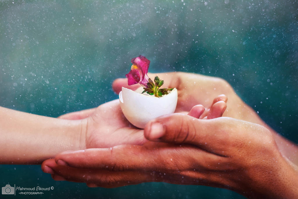 Life within a Life by M4fotos