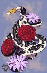 Reticulated Python Tattoo by AshasCadence