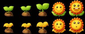 sunshine flower icon
