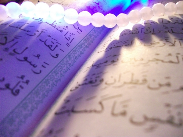 quran book by djallalyazid