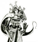 Samurai  warrior: Yukimura