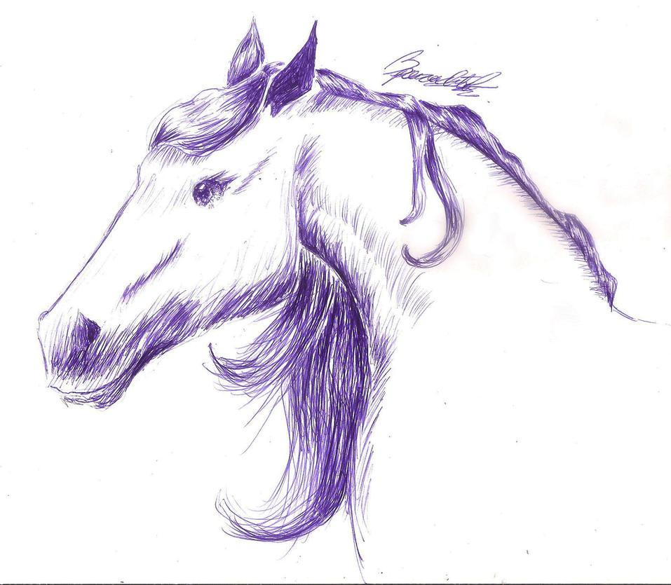 Arabian herse by peraltamaria