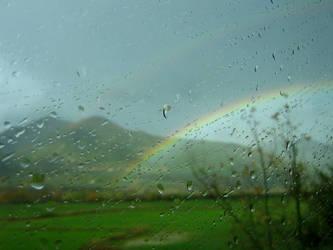 rainbow by araXne