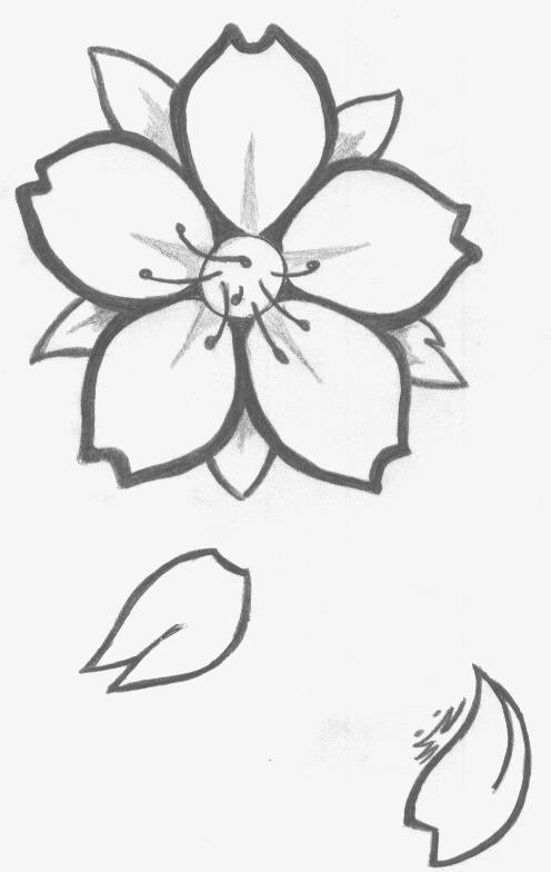 comment dessiner des fleurs de cerisier. Black Bedroom Furniture Sets. Home Design Ideas