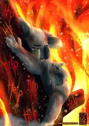 Save the koala - Save the planet