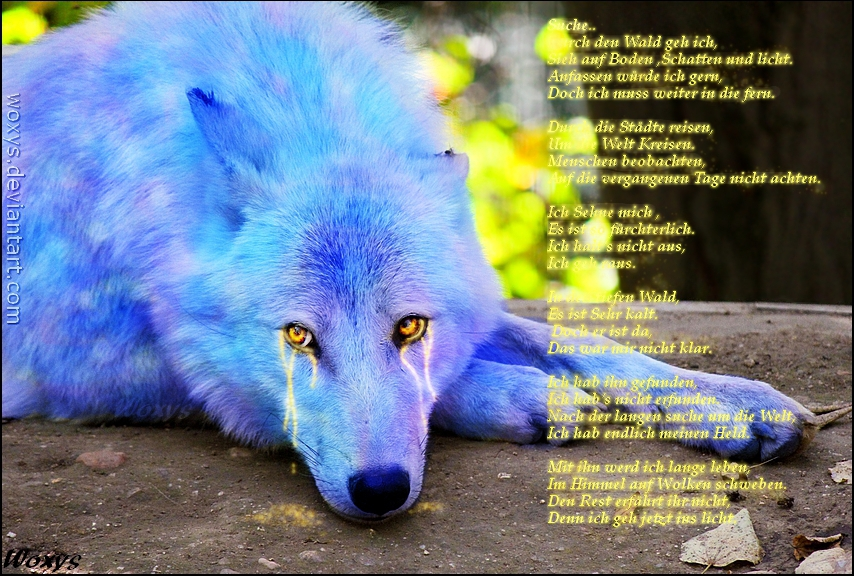 Ryon Only For You German Wolf Mit Gedicht By Aryachan