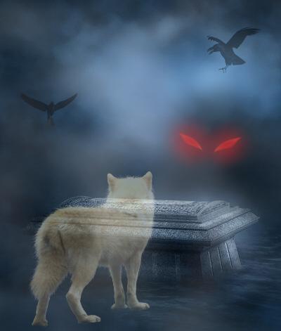 http://fc02.deviantart.net/fs70/f/2012/126/a/7/wolf_ghost_by_aryachan_love_wolves-d4yovmf.jpg