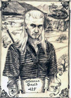 The Witcher by Ainaven