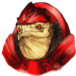 my krogan husband