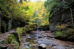 Autumn Creek 1