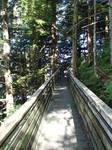 Wooden Bridge 1