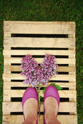 .lilac love by immacola