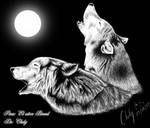Wolfs to the moon...