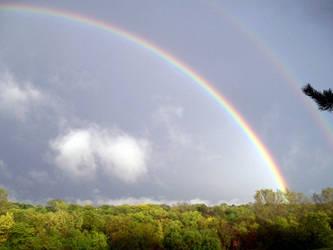 rainbow by arockat