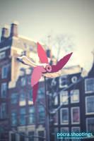 Amsterdam Duck by pocra