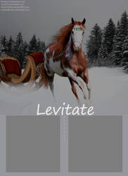 Levitate Christmas Layout