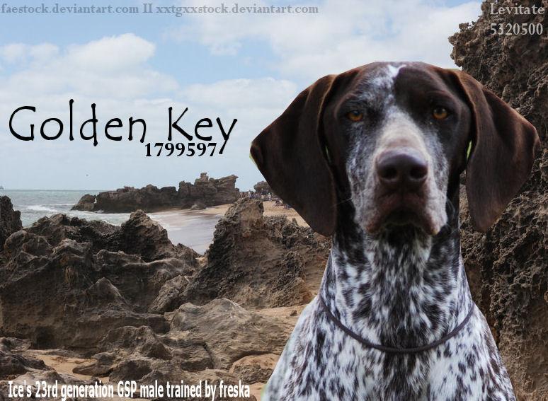 Golden Key by jcjrichter06