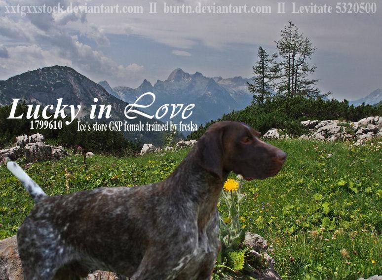 Lucky In Love by jcjrichter06