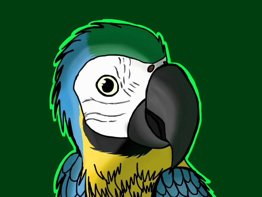 Another macaw by barnowlgurl23