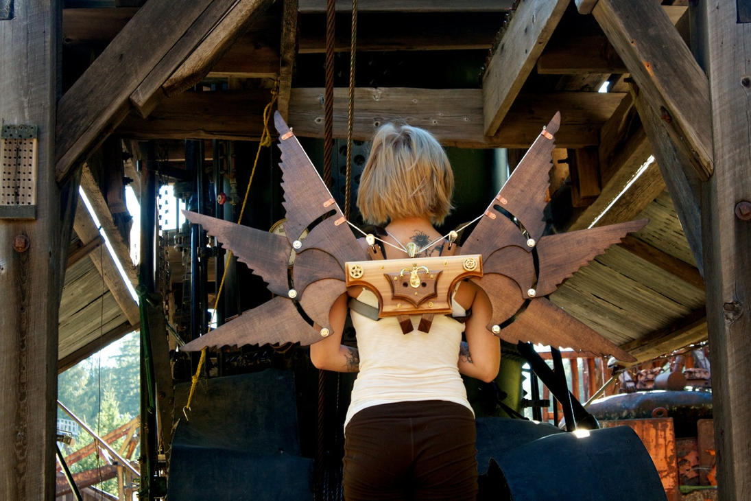 I Want To Buy Used Com >> Steampunk Icarus Wings MK2 2 by steampunk22 on DeviantArt