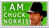 I AM Chuck Norris by ARTic-Weather