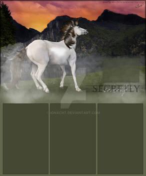 Secretly's Layout