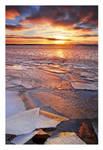 a Cold Sea