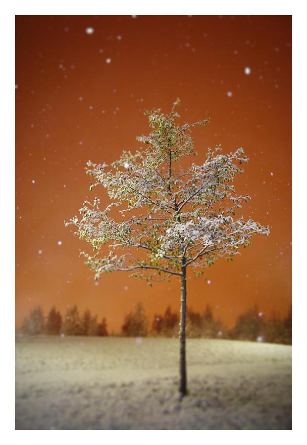 la Premiere neige by jjuuhhaa