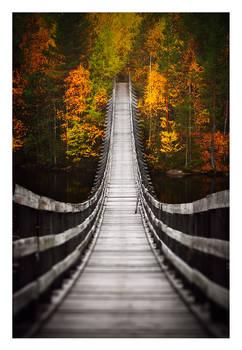 Bridge into Autumn