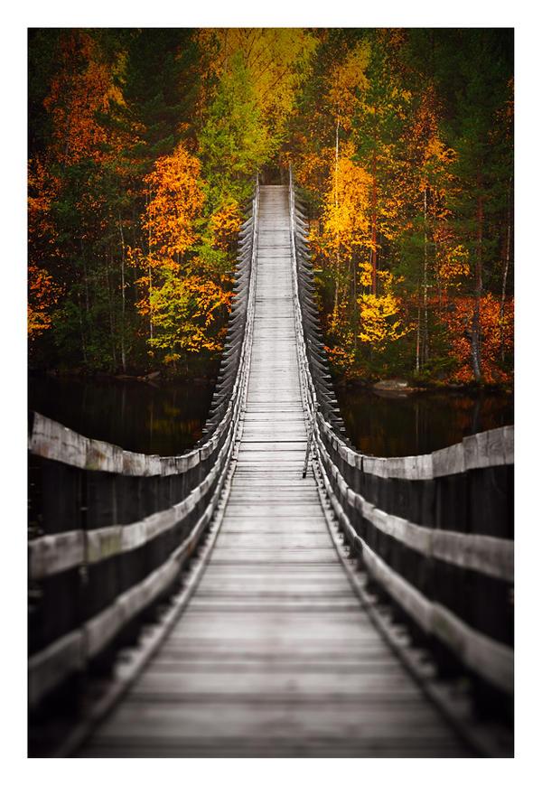 Bridge into Autumn by jjuuhhaa