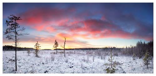 Pilpasuo Sunrise Panorama