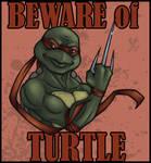 TMNT: Beware of Turtle