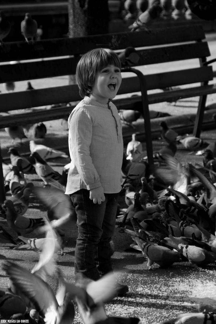 Between pigeons by EricLoConte