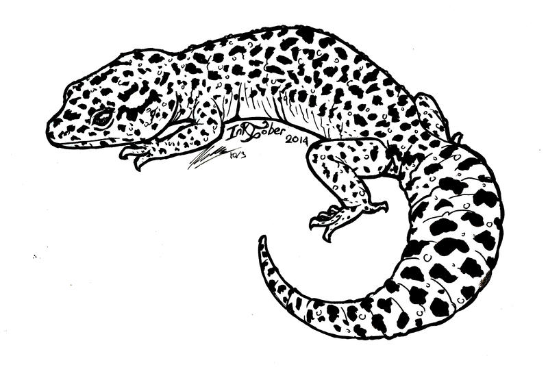inktober 2014 day 3 leopard gecko by kaybeast on deviantart - Gecko Coloring Pages