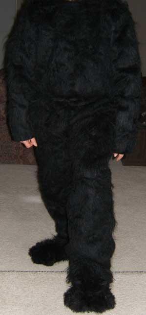 fursuit 4 by Halfshell