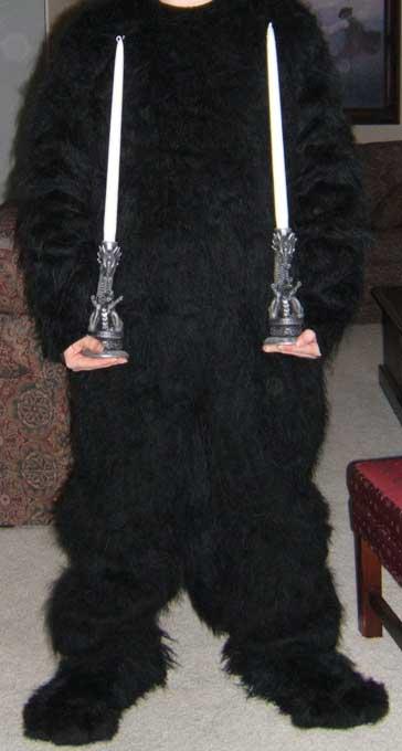 fursuit 16 by Halfshell