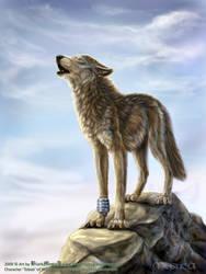 Toboe from Wolf's Rain by FelisGlacialis