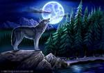 Mystic Magic Moon