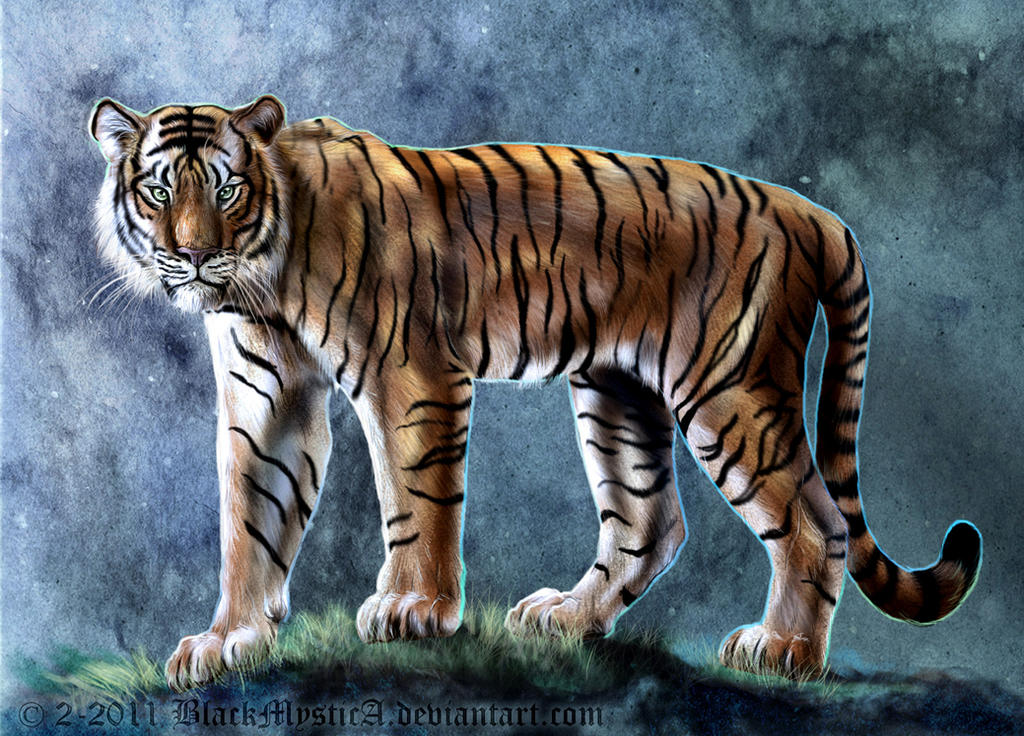 Mystic Tiger by BlackMysticA