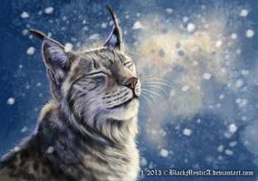 Winter heart by FelisGlacialis