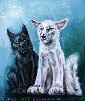 Stian and Yava as kittens