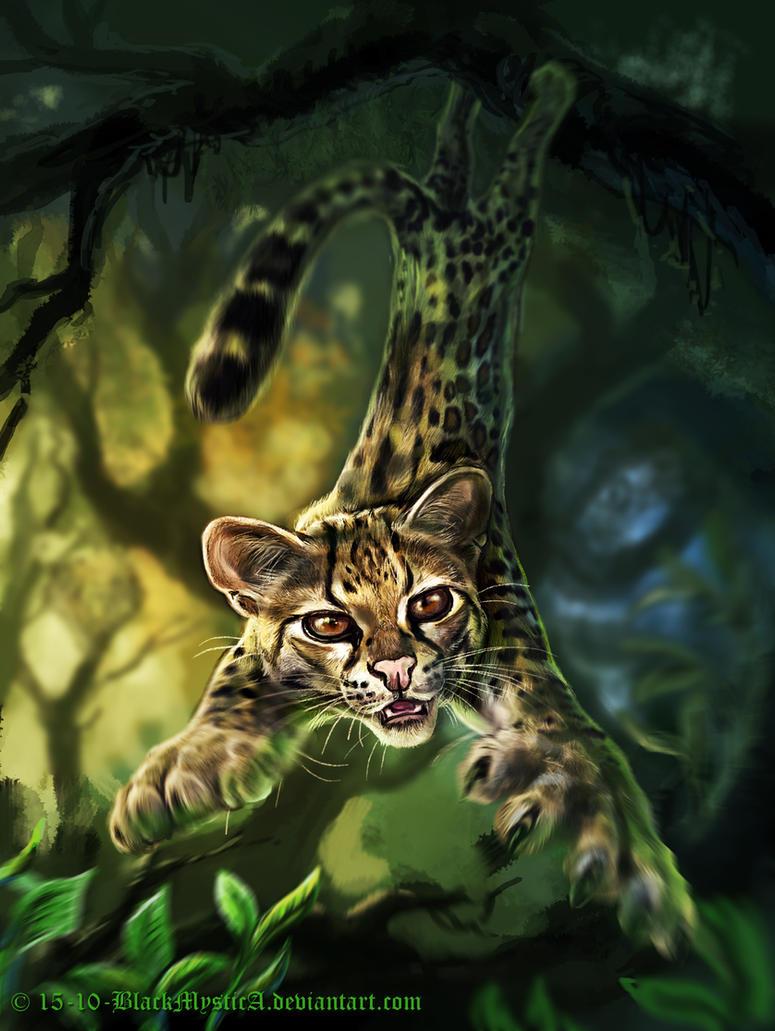 Felidae: the margay (Leopardus wiedii) by BlackMysticA
