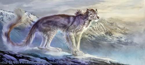 Niska, a warm silver shade in the snow