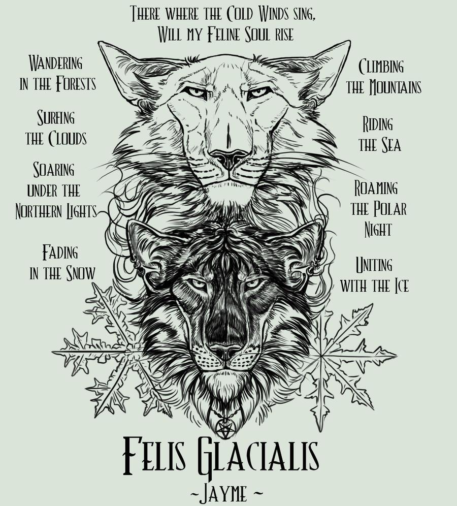 FelisGlacialis's Profile Picture