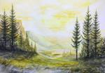 Coniferous valley