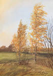 Birches by GogiVer