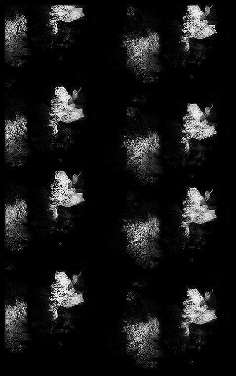 Ghost by ADakin