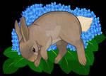 Rabbit and Hydrangeas
