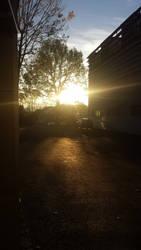Photography #15 - Sunlight