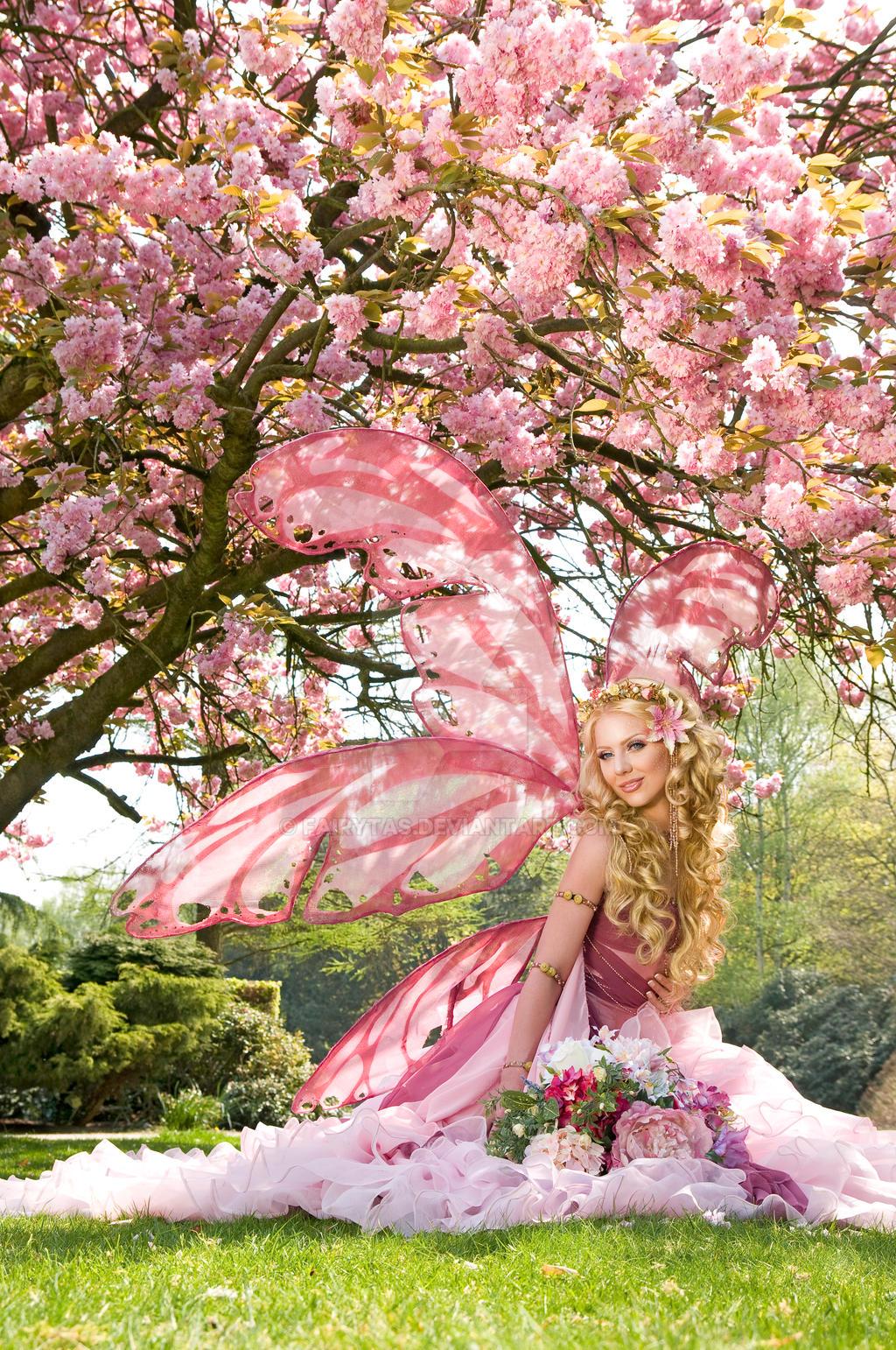 Cherry Blossom by Jolien-Rosanne